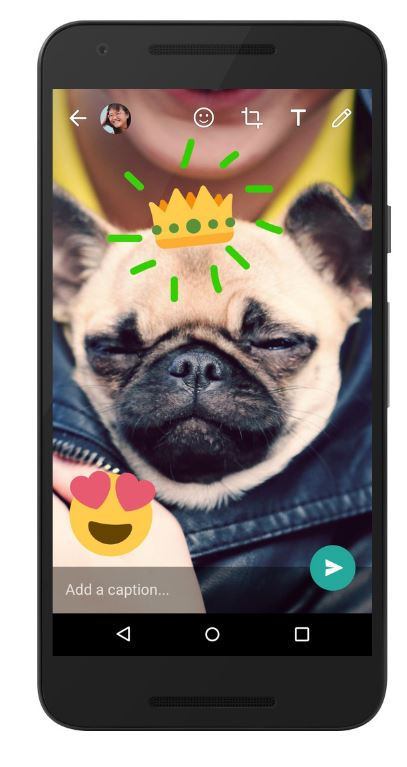 Now, doodle on photos and videos in WhatsApp